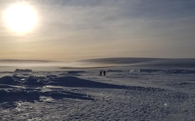 tom and fiona walking to the snow hill emperor penguin colony naomi box